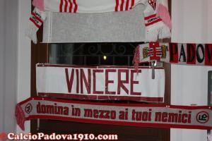 Alta Padovana Biancoscudata: trova l'intruso...