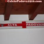 Alta Padovana Biancoscudata